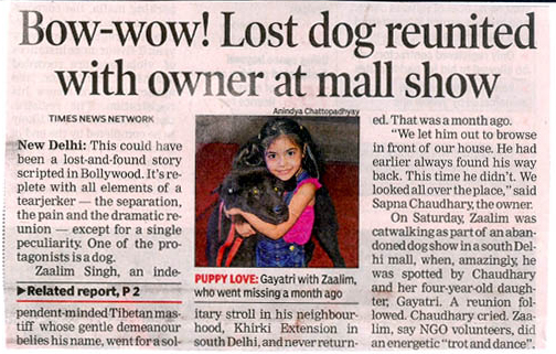 Bow-wow! lost Dog Reunited With Owner At Mall Show