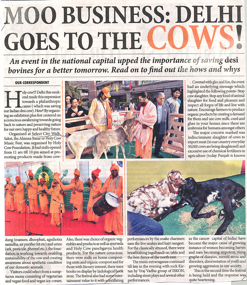 Delhi goes to the COWS!