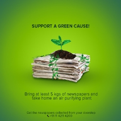 Towards greener pastures: #GreenWaliDiwali