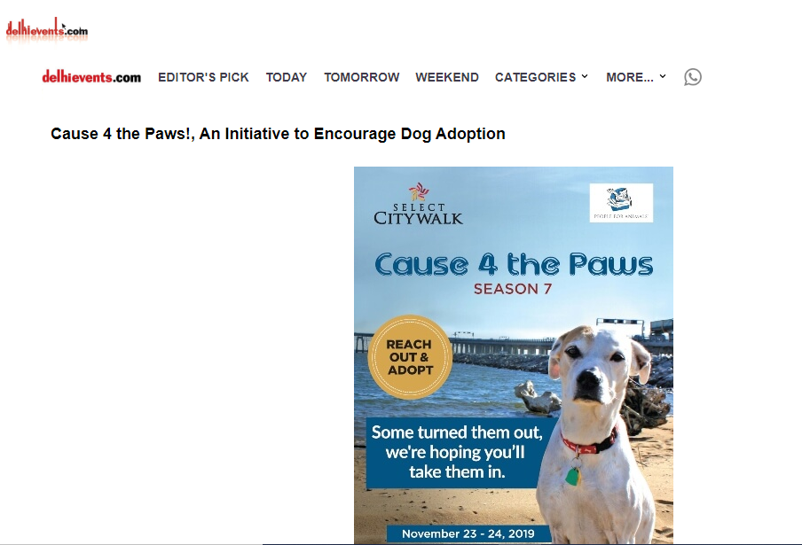 Cause 4 The Paws!, An Initiative To Encourage Dog Adoption